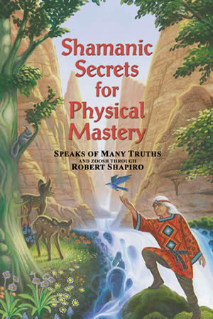 Shamanic Secrets for Physical Mastery, by Robert Shapiro